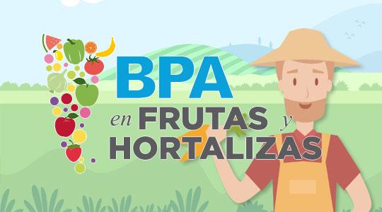 Alimentos argentinos en hortalizas