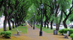 Gestión sustentable de espacios verdes